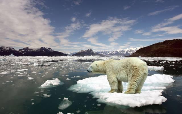 Por-qué-el-hielo-flota-en-el-agua